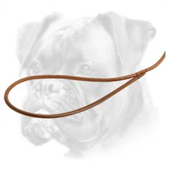 Best quality leather round Boxer leash