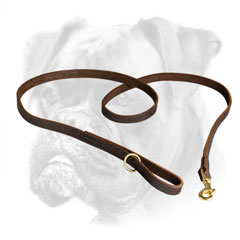 Reliable leather Boxer leash for different activities