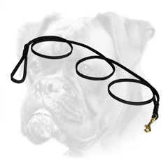Premium quality Boxer lead for walking