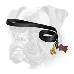 Walking and tracking nylon Boxer leash
