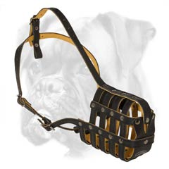 Fully air ventilated leather Boxer muzzle