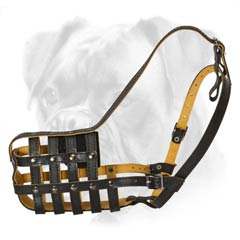Socialize your Boxer without problems with this quality muzzle