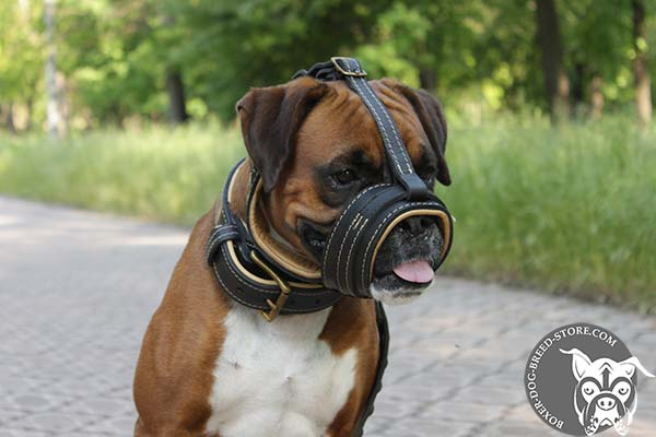 Boxer muzzle with Nappa padding will not rub