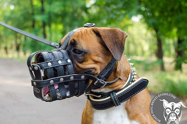 Adjustable leather Boxer basket muzzle