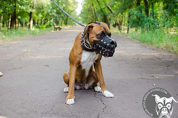 Leather basket Boxer muzzle