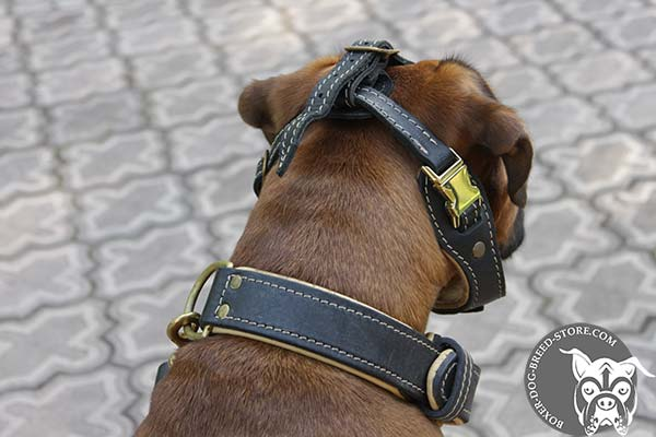 Easy adjustable Boxer muzzle