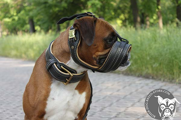 Leather Boxer muzzle with excellent air flow