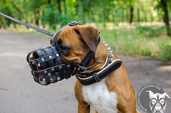 Sturdy riveted leather Boxer muzzle