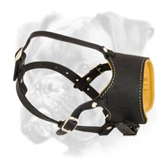 Soft Nappa padded leather Boxer muzzle