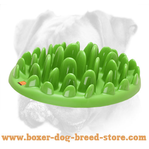asp insert dog bowl feeder pets products slow p gobblestopper size large postal